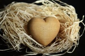 wood-wool-1186917_640